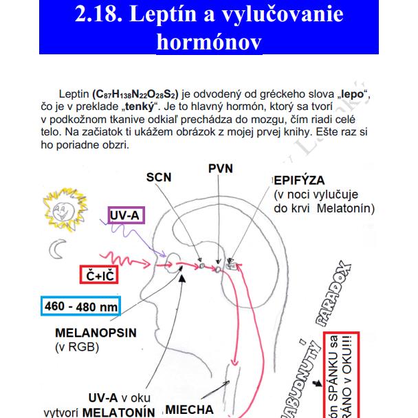 Jaroslav Lachký kniha cirkadiálna biológia leptín hormóny mitochondrie melanopsin melatonin