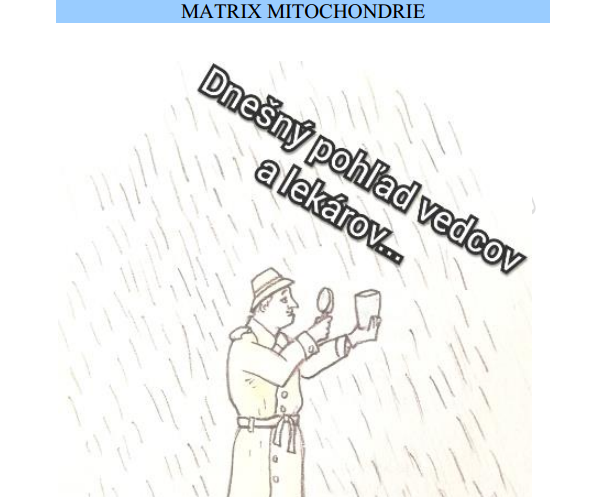 Jaroslav lachký mitochondria matrix kvantová biológia cirkadiálna biológia ATP energia