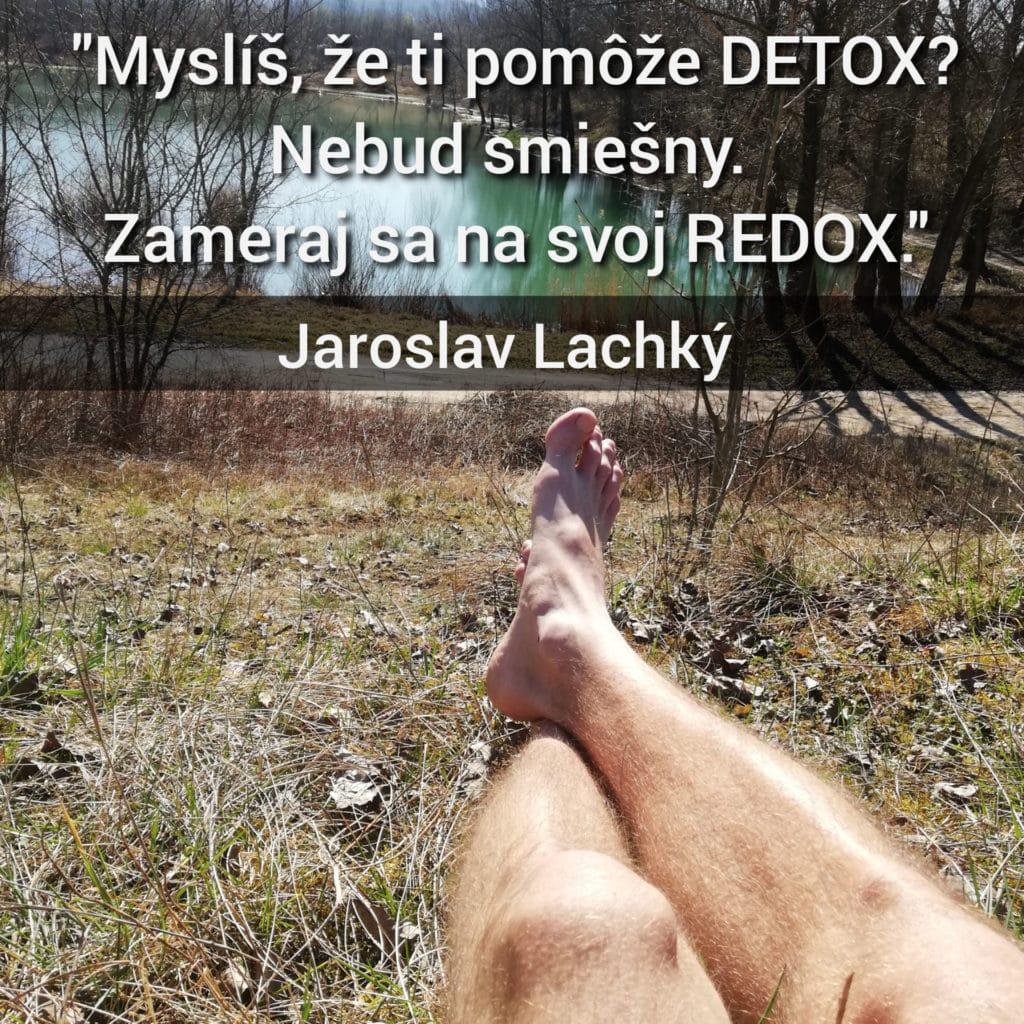 Jaroslav Lachký, redox, detox