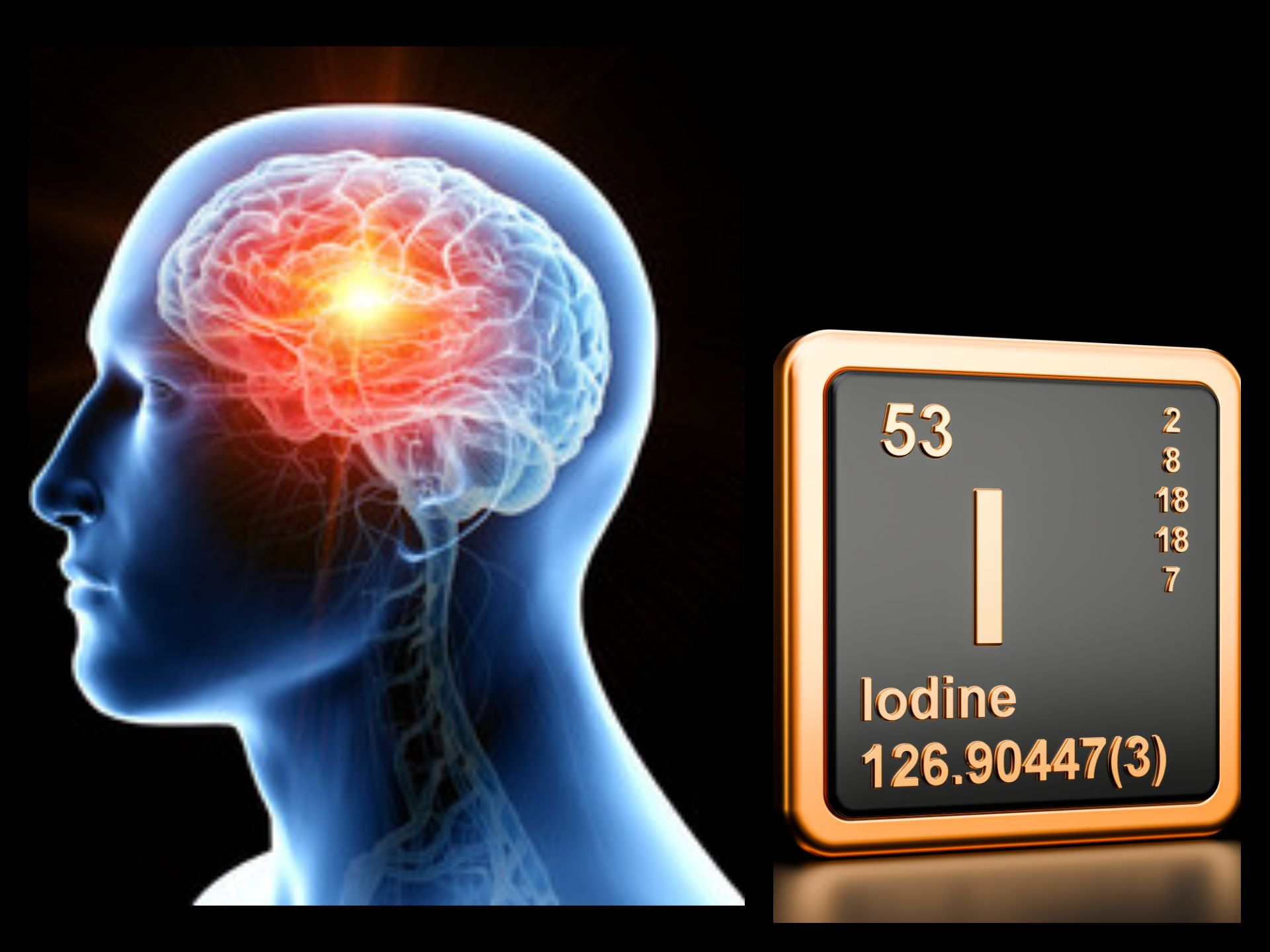 Vznik života #7 Mozog a Jód