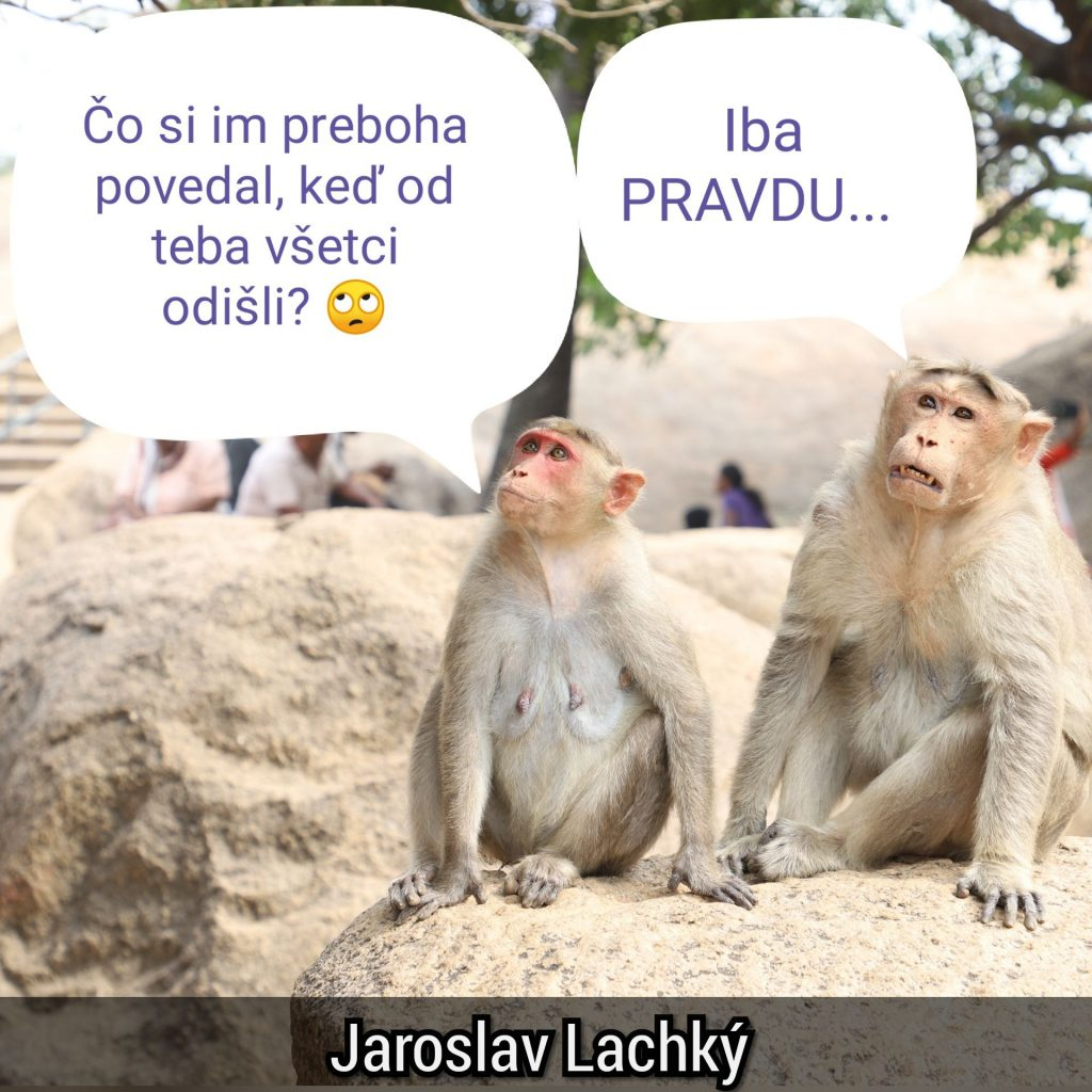 Jaroslav lachký, Slovak mitochondriak cirkadian, Instagram