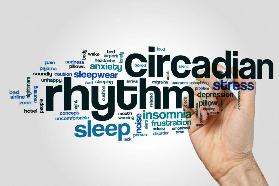 Adaptácia nachlad #5 Leptín acirkadiánny rytmus
