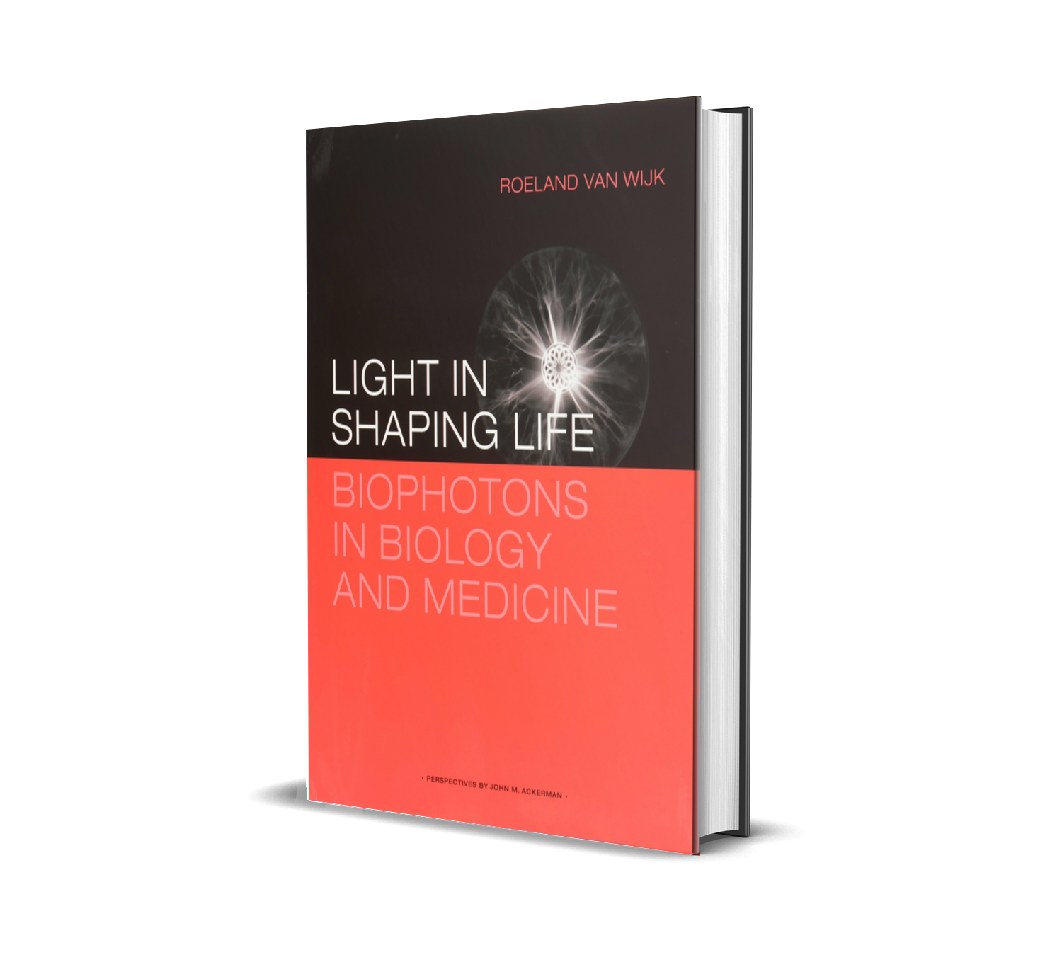 Light in Shaping Life