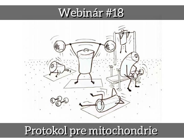 WEBINÁR #18 2021 August - Protokol pre mitochondrie