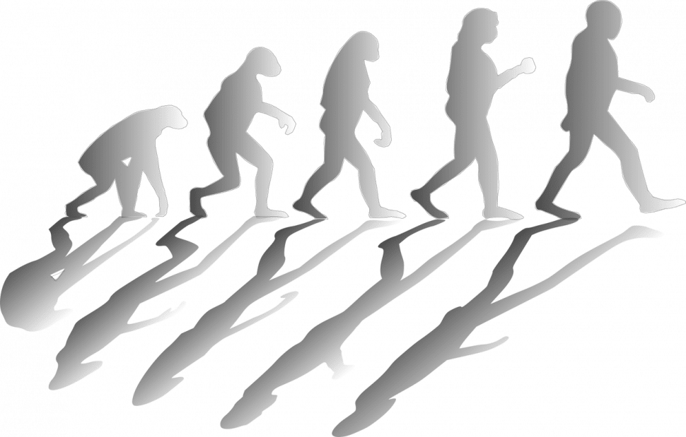 Črevo amozog #4 Bipedalizmus agrounding