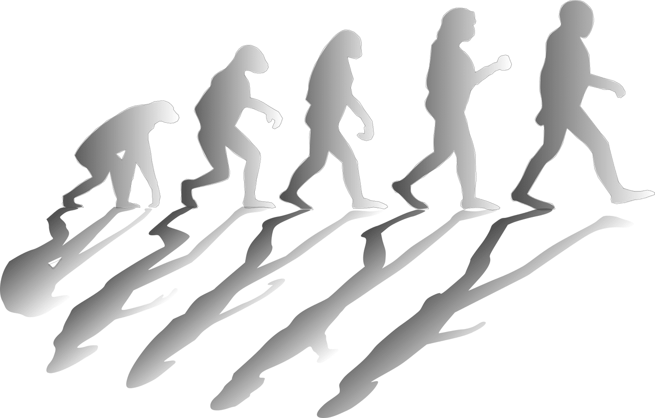 Črevo a mozog #4 Bipedalizmus a grounding
